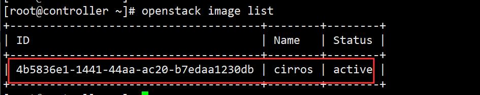搭建Openstack开源云计算平台插图130